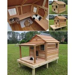 outdoor cat house cool cedar cat cottage