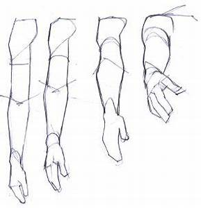 Image result for arm drawing perspective | anatomy ...