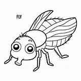 Fly Coloring Vector Clip Vlieg Hoverfly Fluga Mouche Illustrations Cartoon Ladybug Coloriage Livre Kleurend Boek Dessin Illustrationer Sequence Animal Housefly sketch template