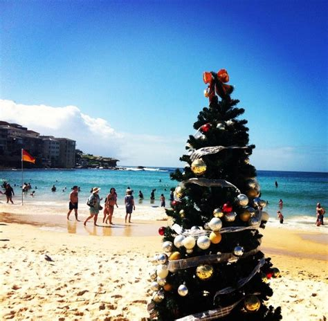 62 best images about christmas in australia on pinterest