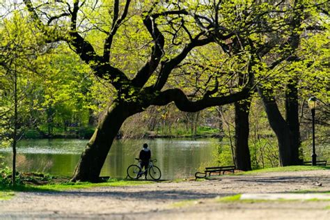 Best Things to do in Prospect Park in Brooklyn - Your ...
