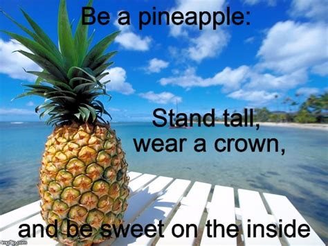 Pineapple Memes - stand tall be sweet pineapple imgflip