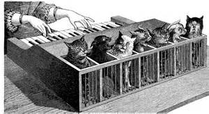 cat piano katzenklavier the cat piano the museum of ridiculously