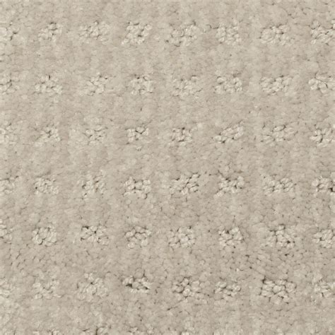 Pet Urine Resistant Carpet by Platinum Plus Ageless Beauty I Color Alpine 12 Ft