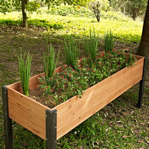 Coral Coast Bloomfield Wood Raised Garden Bed 70l X 24d X