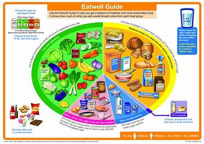Eating Better Eatwell Eat Guide Meat Plate