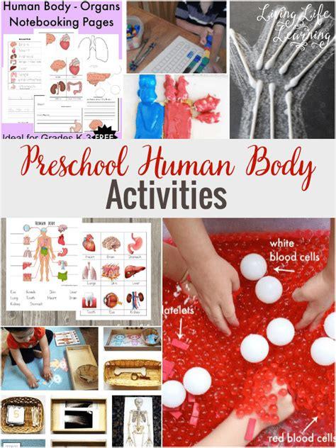 preschool human activities 818 | Preschool Human Body Activities