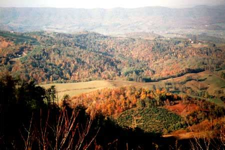 va mountain view home  acres  sale  owner  blue ridge parkway