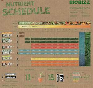 Heavy 16 Feeding Chart Feeding Schedules Bloom Garden Supply