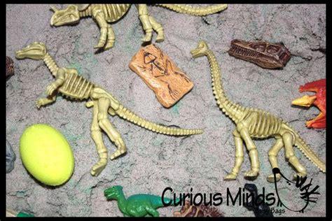 dinosaur dig  excavation sensory bin toy dino skeleton