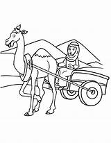 Camel Drawing Coloring Cart Cartwheel Cute Outline Arabian Pages Sketch Getdrawings Template Clipart Paintingvalley sketch template