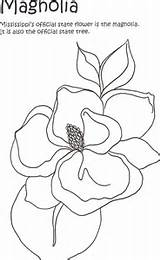 Magnolia Printable Coloring Flower Pages Watercolor Getcolorings Painting Imagixs sketch template