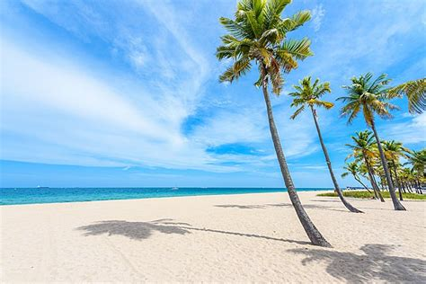 top rated tourist attractions  fort lauderdale