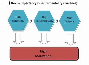 Training  U0026 Development  Expectancy Theory