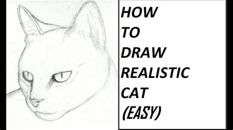 draw cat realistic easy youtube