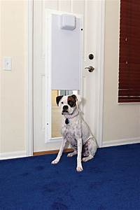 Electronic wall mounted plexidor dog door for sliding for Automatic dog doors for walls