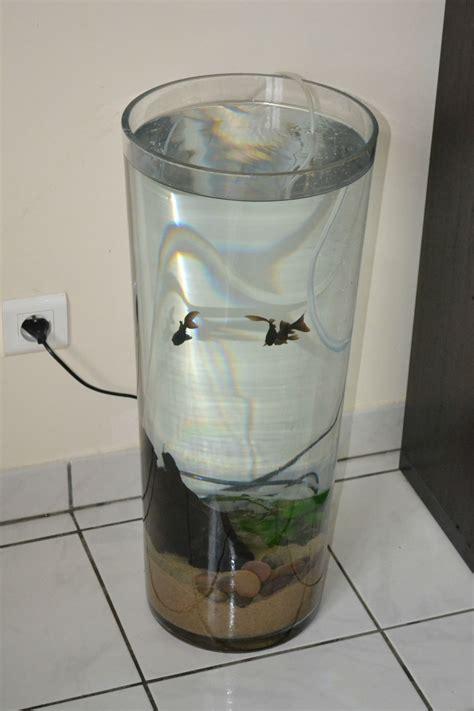 decoration pour aquarium pas cher sedgu