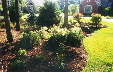 woodland perennial gardens country scape landscaping