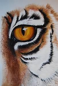 Tiger Eyes Drawing At Getdrawings