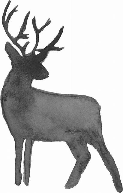 Deer Watercolor Silhouette Transparent Background Onlygfx 1259