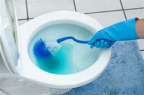 removing toilet bowl stains thriftyfun