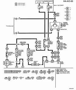 air pressor 230v single phase wiring diagram 208v plug With 208v plug wire diagram