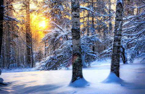 Hd Winter Photo by Winter And Snow Wallpaper Pixelstalk Net