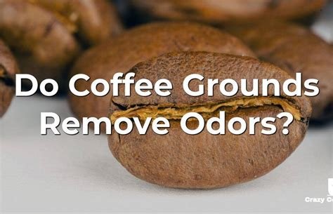 The reality is that coffee's ph is already low enough, and the acidity of coffee, as a chemical property, is not the cause for your stomach problems. Do Coffee Grounds Remove Odors? Why And How To Use It   Crazy Coffee Crave