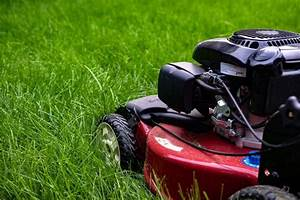 How To Overseed A Lawn - A Cool Season Lawn Guide