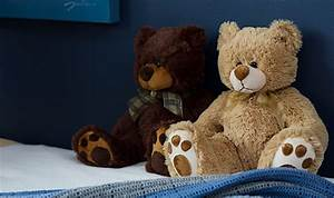 How to Choose the Right Teddy Bear For You | The Koch Blog