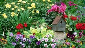 Free Desktop Wallpaper Flowers Garden