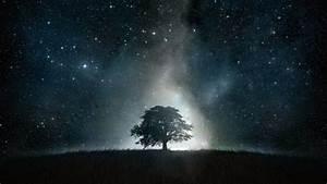 HD Hintergrundbilder landschaft baum dunkel sterne himmel ...