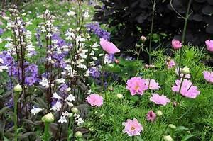 Gemüse Pflanzen Was Passt Zusammen : jeden sommer ein neuer garten gartenzauber ~ Lizthompson.info Haus und Dekorationen