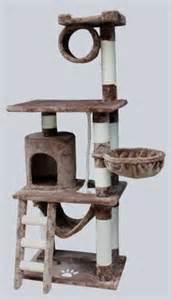 cat climbing tower boston cat climbing towers