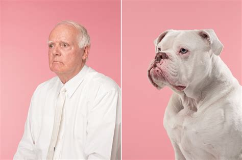 hilarious photo series shows   owners
