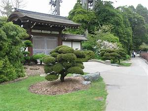 35, Amazing, Japanese, Garden, Designs, For, Exciting, Home, Ideas, With, Images