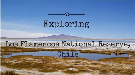 Exploring Los Flamencos National Reserve, Chile