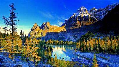 Nature Scenery 4k Landscape Mountain Forest Lake