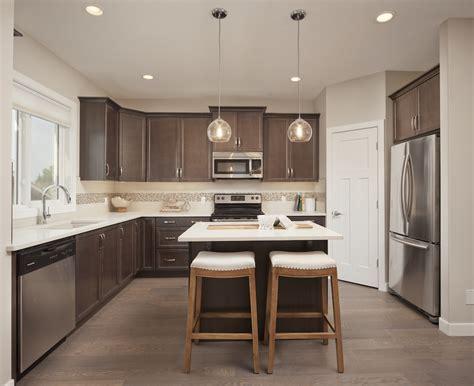 Transitional Kitchen Designs Bestsciaticatreatmentscom