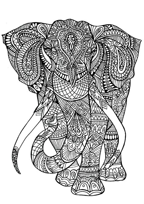 animals coloring pages  adults coloring adult elephant patterns