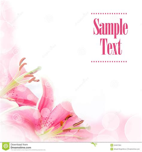 flower greeting card stock images image