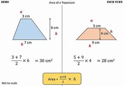 Trapezium Area Maths