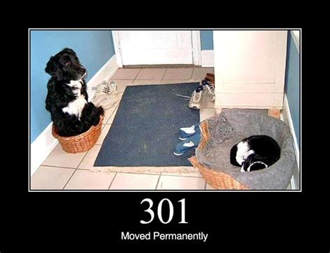 301 Moved Permanently Status Dogs
