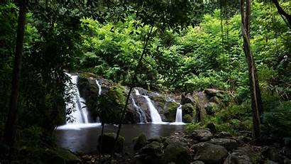 Scenes Tropical Landscape Nature Trees Forest Waterfall