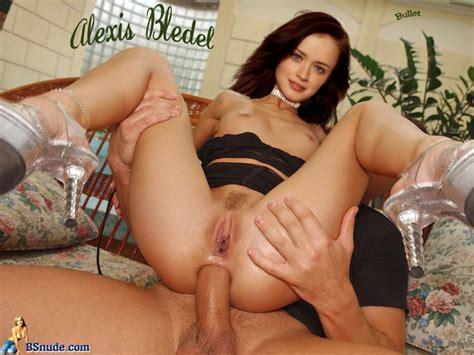 alexis bledel xxx