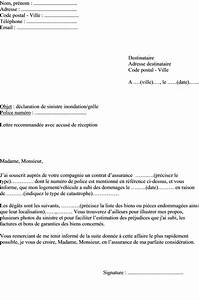 Remboursement Assurance Emprunteur Lettre Type : mod le de lettre d claration l 39 assurance d 39 un sinistre ~ Gottalentnigeria.com Avis de Voitures