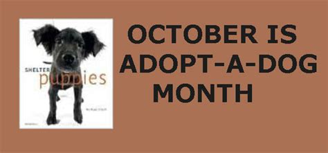 October Is  Ee  Adopt Ee    Ee  A Dog Ee   Month Topeka Shawnee County Public Li Ry