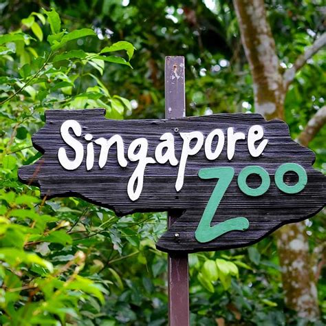 Singapore Days Package Inr Person Behind Trips