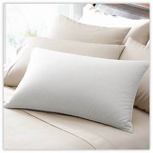 10 best top rated pillows eco friendly twist vegan With best rated down pillows