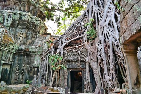 Angkor Wat: Avoid the Crowds | Cambodia | Little Wanderbook